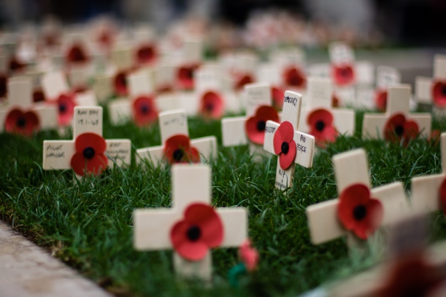 Remembrance Day Crosses - Owen Benson