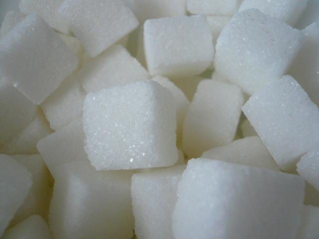 Sweet Sugar Potsdam - Coralle Ferreira